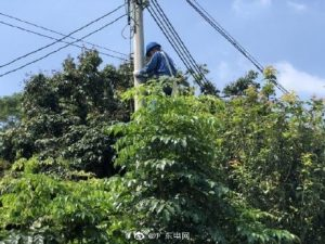 惠州博罗供电局变压器检修