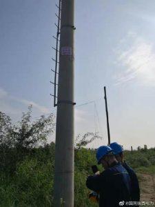 国网潼关县供电公司对线路设备进行带电检测