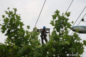 国网高密供电公司10千伏康庄线线路架设