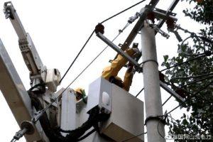 东平县供电公司配电运维人员带电作业消缺