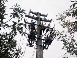 供暖线双回线路开展秋季检修工作