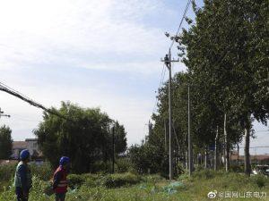 龙口市石良镇10千伏尹村线线路绝缘化改造
