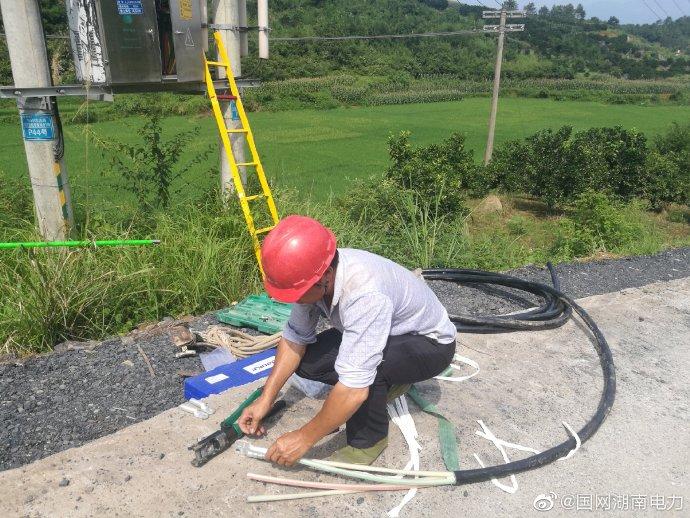低压进出线电缆进行更换