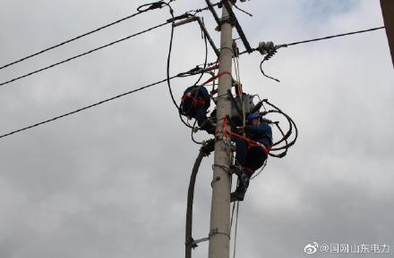 10千伏胜兴线电力检修消缺