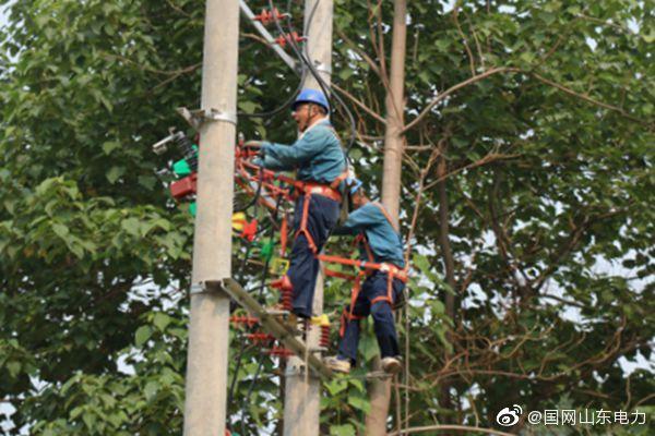 国网东平县供电公司对梯门镇东瓦庄村设备改造