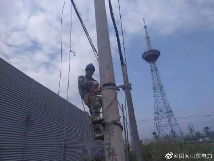国网临沭县供电公司组织人员新建及更换绝缘导线共400余米