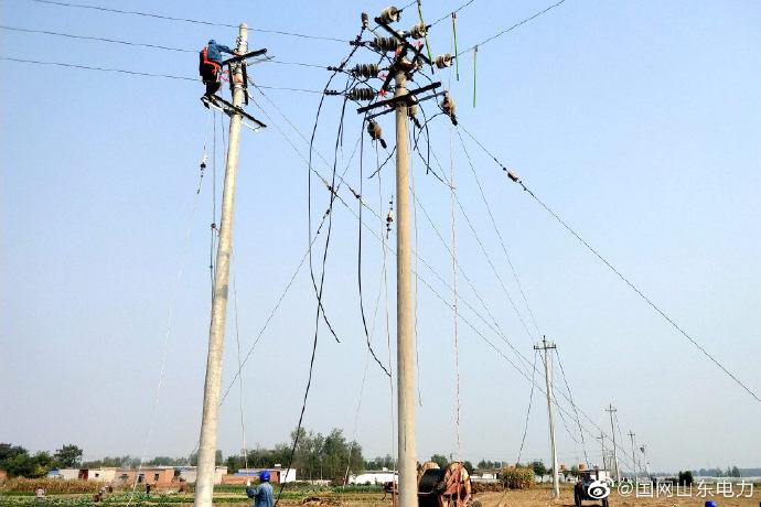 国网阳谷县供电公司组织人员到10千伏十五里元线进行升级改造