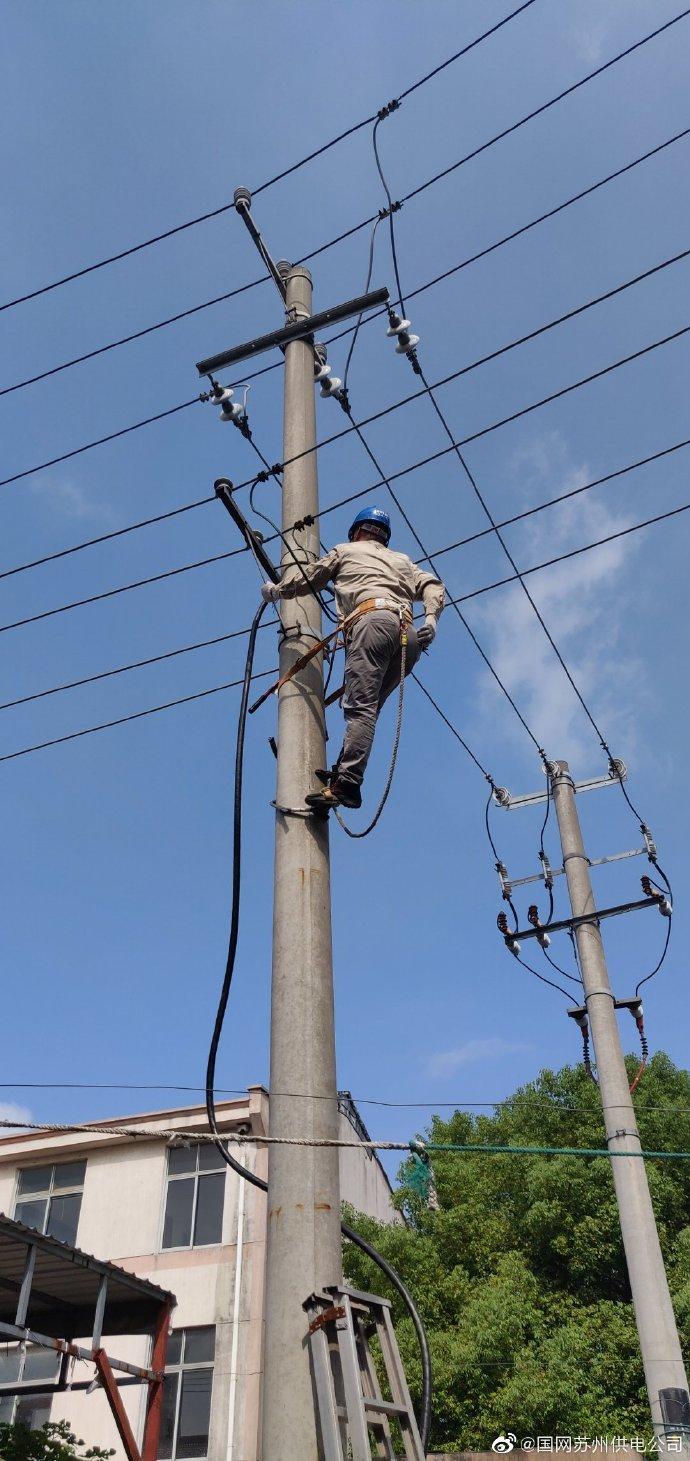 通江路北台区411西出线2#电杆进行现场登杆检查