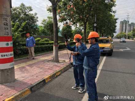 国网西安市鄠邑区供电公司工作人员开展重载线路带电检测工作
